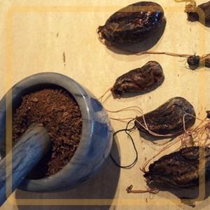 как применять бобровую струю при псориазе